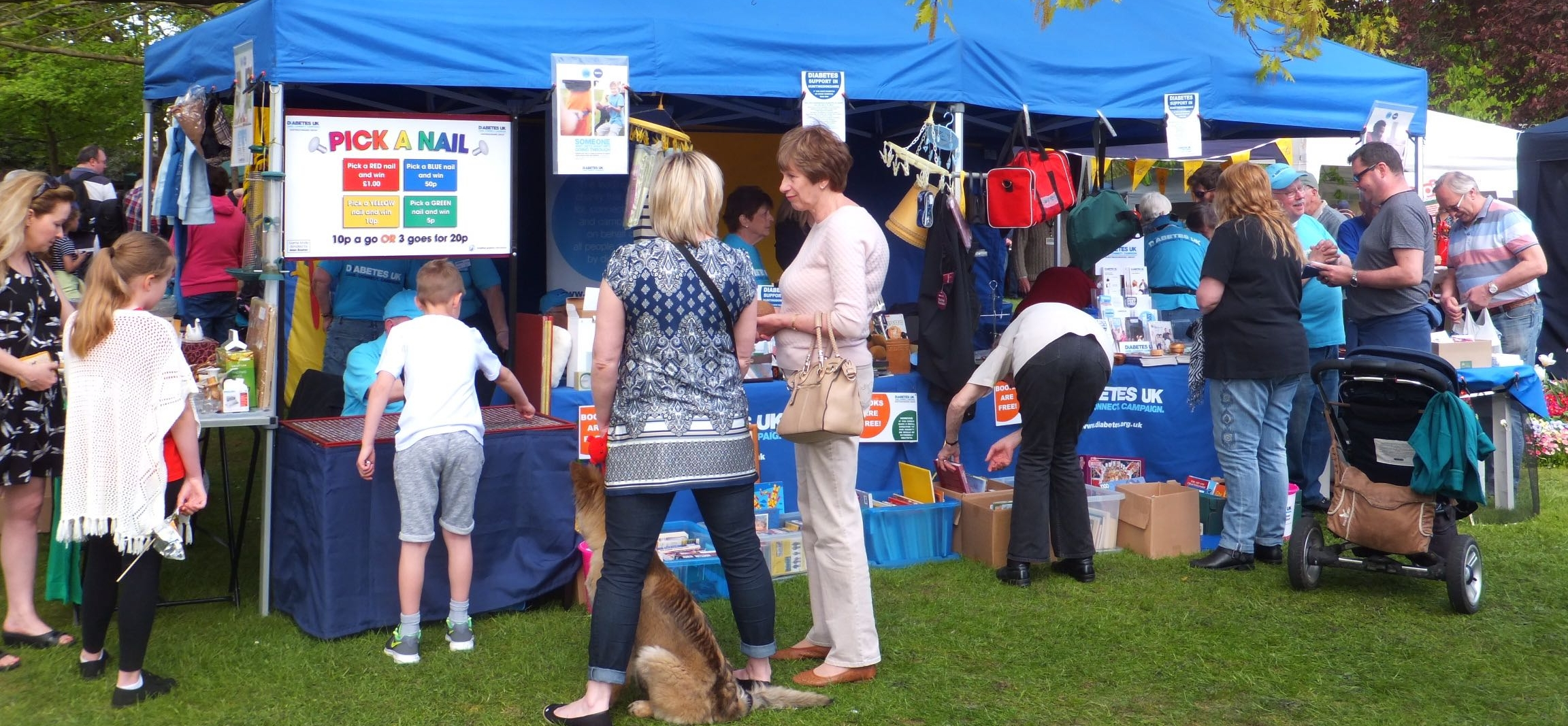 Eaton Socon Village Fete, May 2015